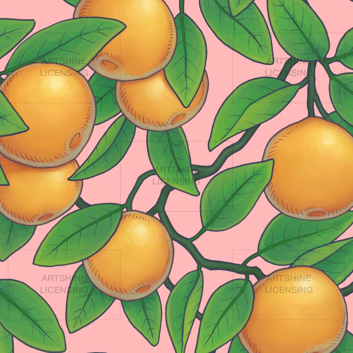 Oranges #01
