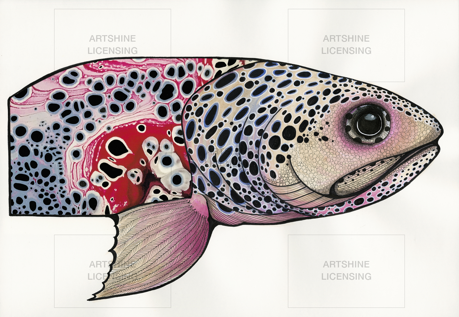 """Spotted Trout"""