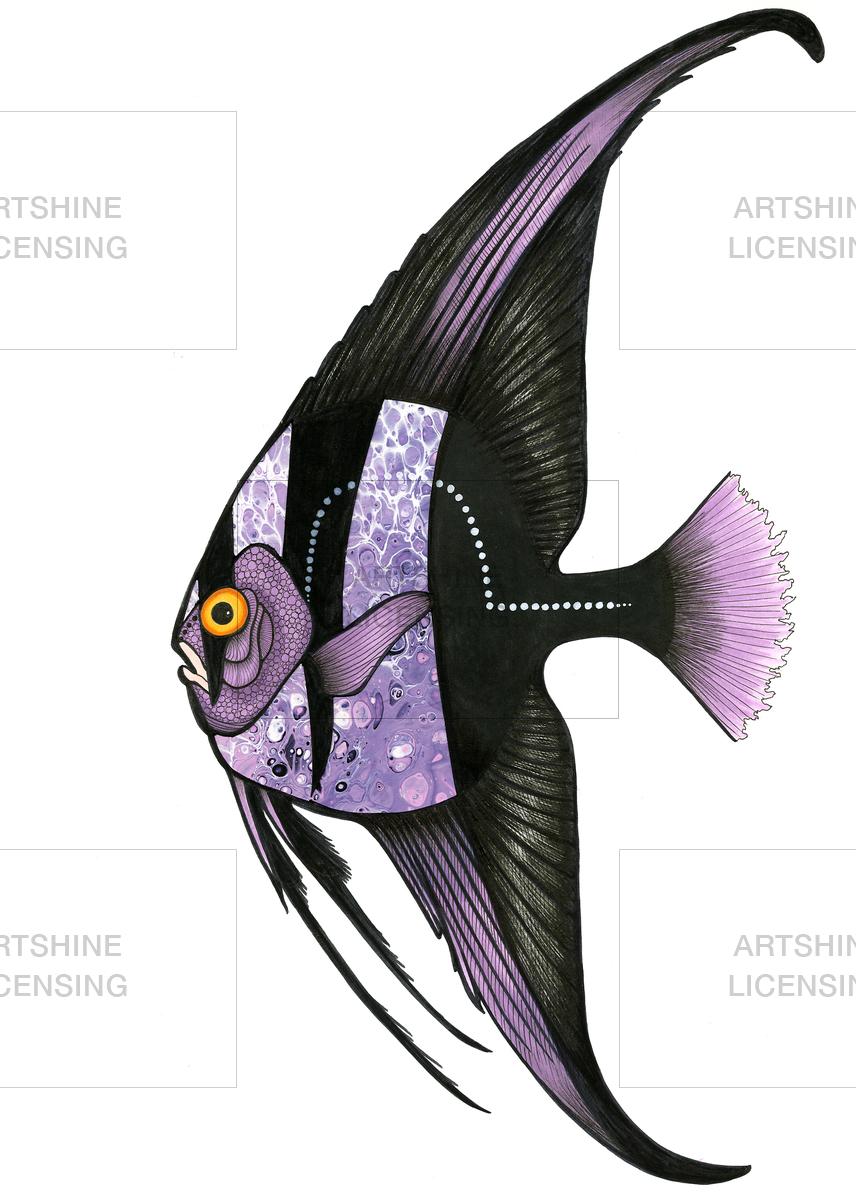 Purple Batfish