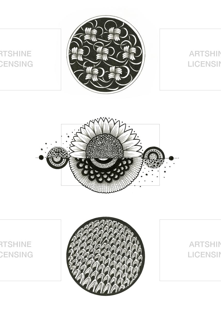 B/Wcircle detail