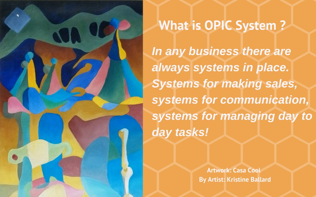What is OPIC System?