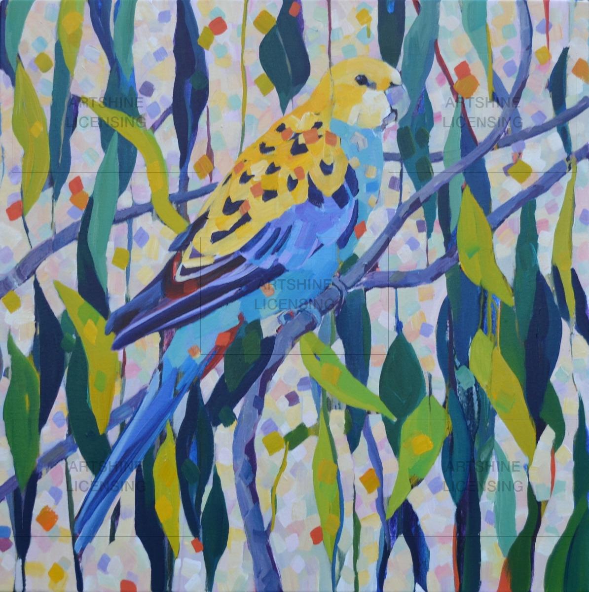 Pale Headed Parrot