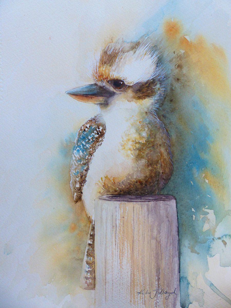 Little Kookaburra