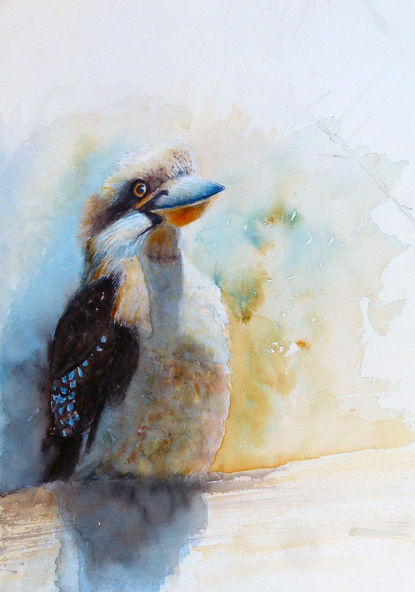 Kookaburra King